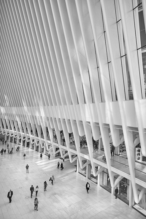Oculus Transportation Hub @ World Trade Center