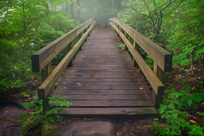 Foot Bridge on Rough Ridge Trail, Blue Ridge Parkway
